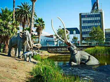 Free Attractions in Los Angeles